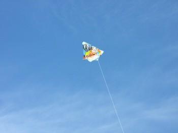 160102_kite-1.jpg
